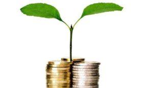 СМП, Субъекты малого предпринимательства