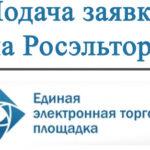 Подача заявки на участие в аукционе (ЕЭТП Росэлторг) 2019